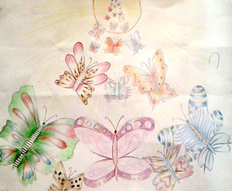 meena butterflies